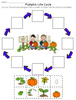 Pumpkin Life Cycle Emergent Reader Book with Writing Activity