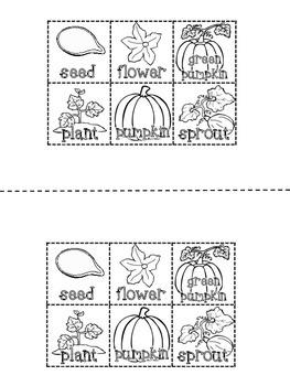 Pumpkin Life Cycle {FREEBIE}