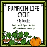 Pumpkin Life Cycle Flipbook