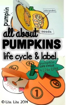 Pumpkin Life Cycle Fold and Learn