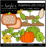 Pumpkin Life Cycle Clipart {A Hughes Design}