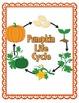 Pumpkin Life Cycle {Informational Writing}