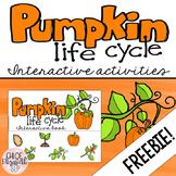 Pumpkin Life Cycle Interactive Activities - FREEBIE!