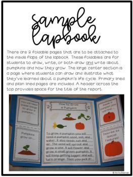 Pumpkin Life Cycle Lapbook
