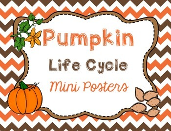 Pumpkin Life Cycle Mini Posters