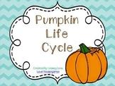 Pumpkin Life Cycle Mini Unit