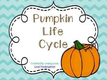 Pumpkin Life Cycle Mini Unit