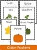 Pumpkin  Life Cycle: Mini Unit