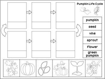 Pumpkin Life Cycle Mini Unit - Sequencing Practice