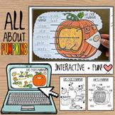 Pumpkin Life Cycle + Parts of a Pumpkin