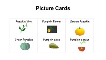 Pumpkin Life Cycle Picture Cards