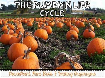 Pumpkin Life Cycle {PowerPoint, Mini Book, & Writing Organizers}