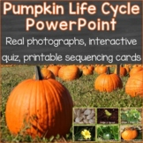Pumpkin Life Cycle PowerPoint w/ Real Photos, Interactive Quiz, Sequencing Cards