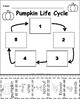 Pumpkin Life Cycle - Printable