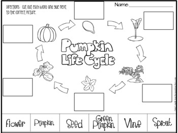 Pumpkin Life Cycle- Printable Reading and Writing Centers