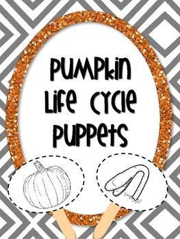 Pumpkin Life Cycle Puppets