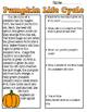 Pumpkin Life Cycle Reading Passage