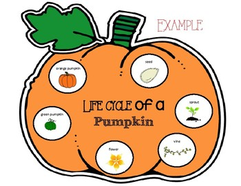 Pumpkin Life Cycle Sequencing Craft
