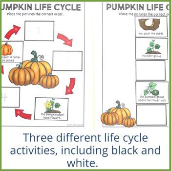 Pumpkin Life Cycle, Sequencing, and Describing