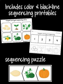 Pumpkin Life Cycle Set