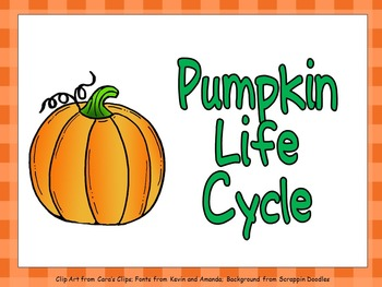 Pumpkin Life Cycle Shared Reading PowerPoint- Kindergarten