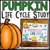 Pumpkin Life Cycle Unit