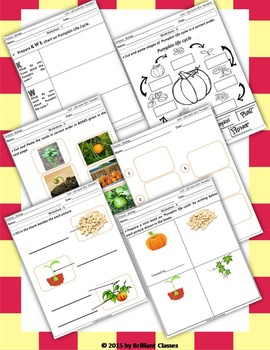 Pumpkin Life Cycle - Unit with Worksheets / Activities