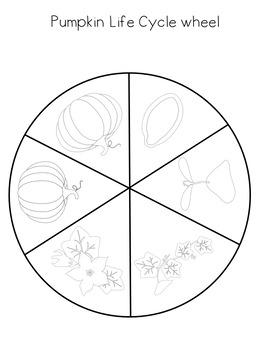 Pumpkin Life Cycle Wheel