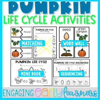 Pumpkin Life Cycle - Word Wall and Activities