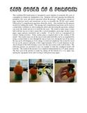 Pumpkin Life Cycle Worksheet and3D Model Activity