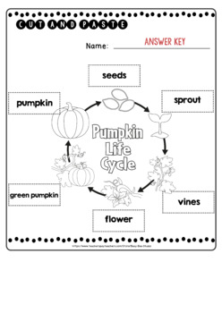 Pumpkin Life Cycle Worksheets | Cut and Paste