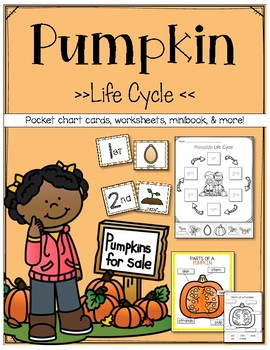 Pumpkin Life Cycle and Parts of a pumpkin