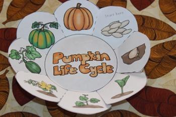 Pumpkin Life Cycle foldable organizer