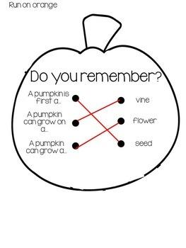 Pumpkin Life Cycle Craftivity { freebie }