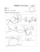 Pumpkin MEGA Pack  ELA Math Science 30 pages of Common Core Printable Activities