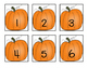 Fall Math: Number Sense!