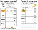 Pumpkin Math Activity Booklet