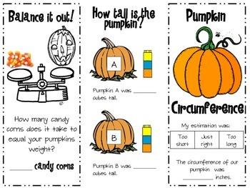Pumpkin Measurement Trifold