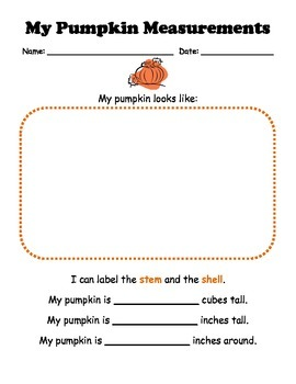 Pumpkin Measurement and Estimation