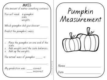 Pumpkin Measurements