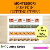 Pumpkin Cutting Strips - Scissor Practice