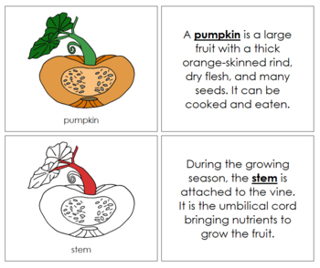 Pumpkin Nomenclature Book (Red)