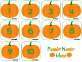 Pumpkin Number Match- Numbers