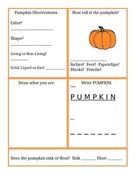 Pumpkin Observation