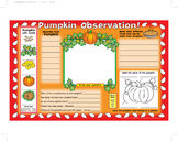 Pumpkin Observation Activity Mats