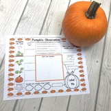 Pumpkin Observation Activity Sheet {FREEBIE}