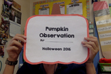 Pumpkin Observation Booklet