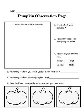 Pumpkin Observation Page