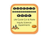Pumpkin Observations Book, Inquiry Activity and Pumpkin Life Cycle cut & paste