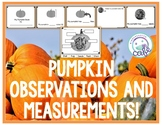 Pumpkin Observations and Measurements!